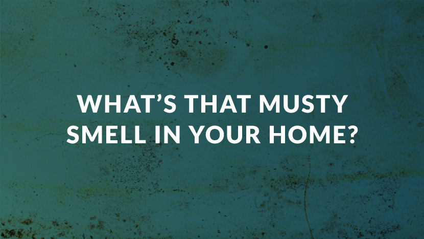 What's that Musty Smell in Your Home?