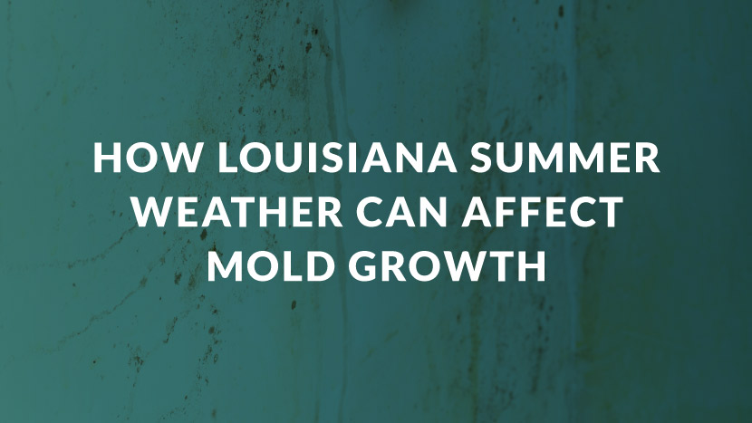How Louisiana Summer Weather can Affect Mold Growth