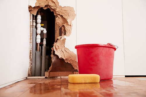 Image of bucket and sponge by a wall of water damage